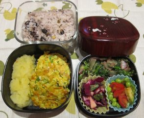 marlene_germanjapanese-bento0926